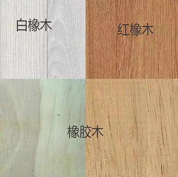 白橡木3种区分